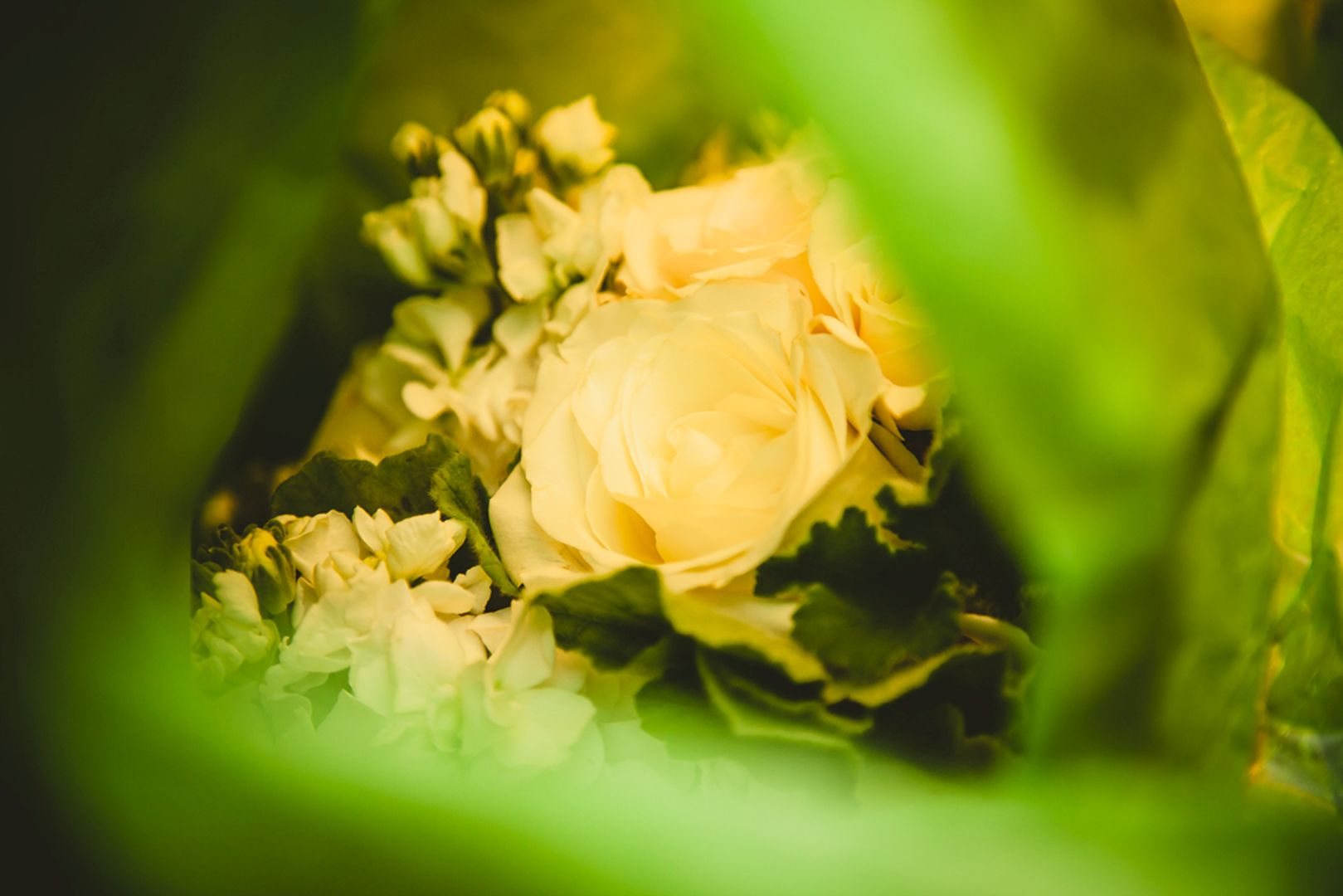 3 Ways to Capture the Best Flower Pictures at Your Wedding